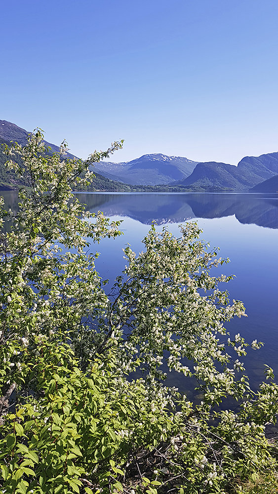 Fjorde-Norwegen.jpg